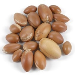 argan oil natural hair oil healing and antioxidant