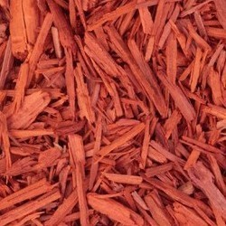 sandalwood irritated scalps, eczema and seborrheic dermatitis