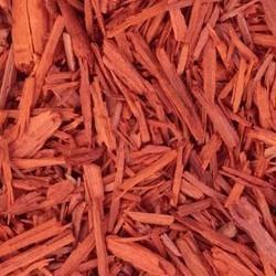 Sandelhout: ingrediënt van Shine Protect olie