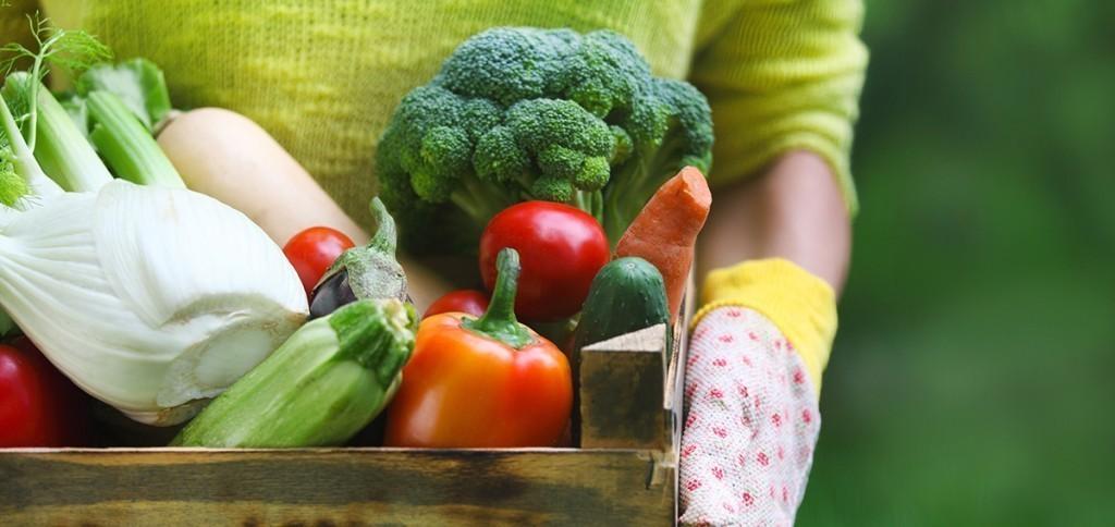 Eine Mangelernährung kann Probleme verursachen, vermeiden Sie eine Mangelernährung